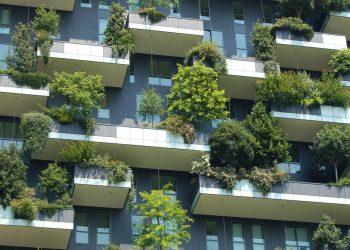 خدمات بيئية